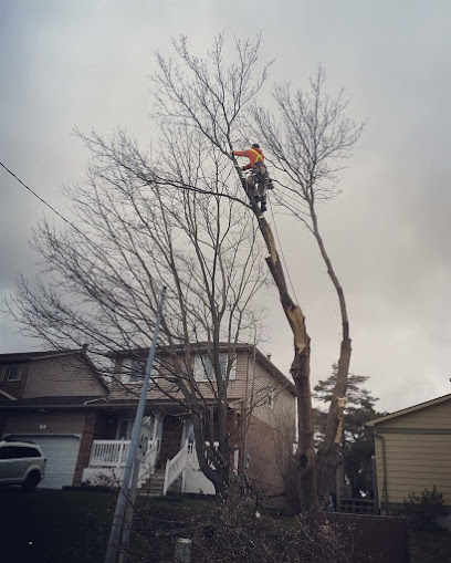 Hardy's Tree Service