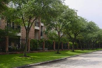 Southlake Lawn Care Pro
