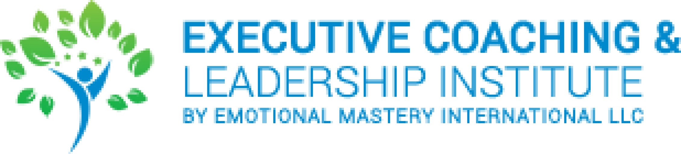Emotional Mastery International LLC