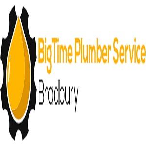 BigTime Plumber Service