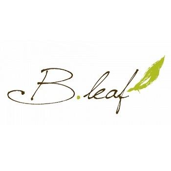B. Leaf Aesthetic Clinic