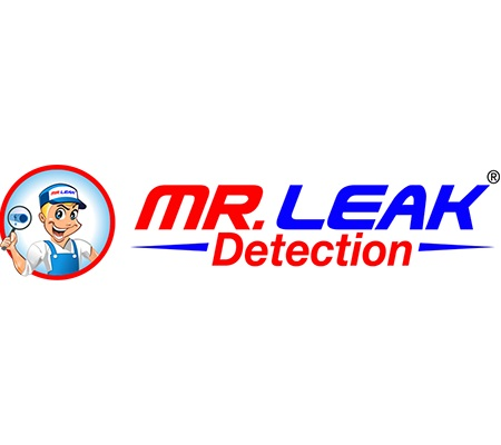 Mr. Leak Detection of Georgia
