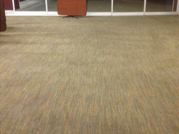 Carpet Cleaning World