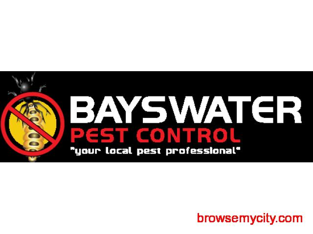 Best Pest Control Company in Melbourne - Bayswater Pest Control