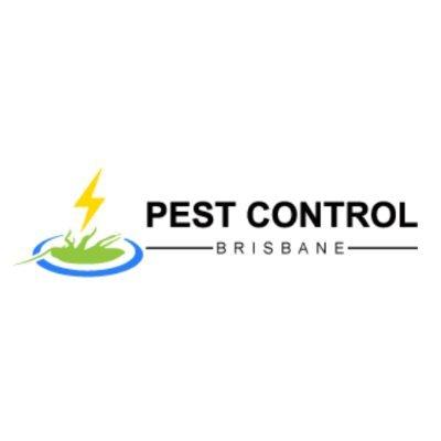 Best Pest Control Brisbane
