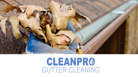 Clean Pro Gutter Cleaning Dayton