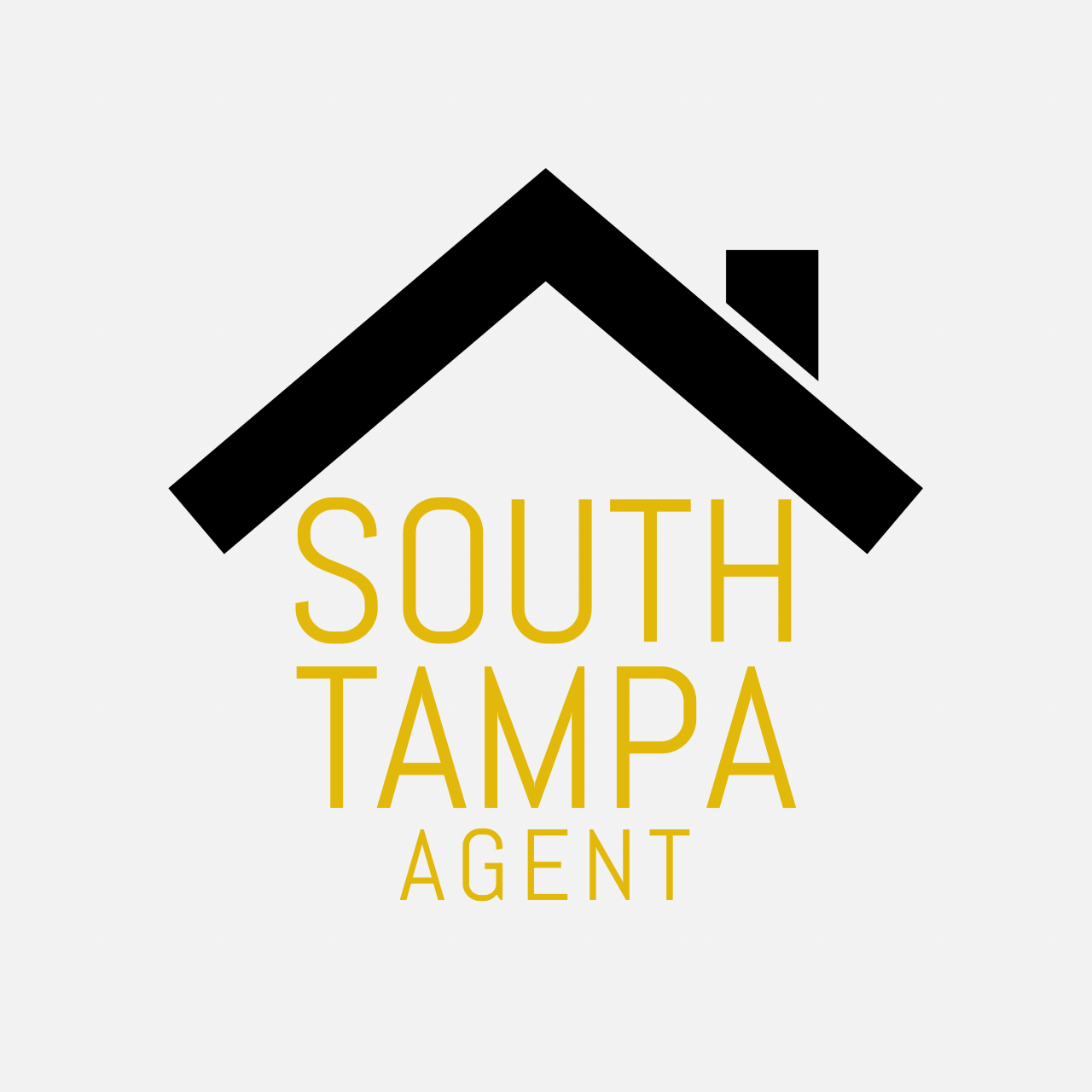 South Tampa Agent