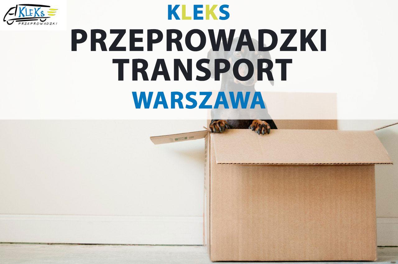 Dariusz Grzyb Kleks