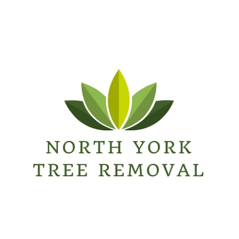 Tree Removal North York