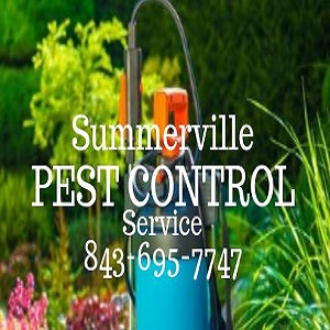 Summerville Pest Control Service