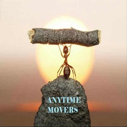 Anytime Movers Singapore