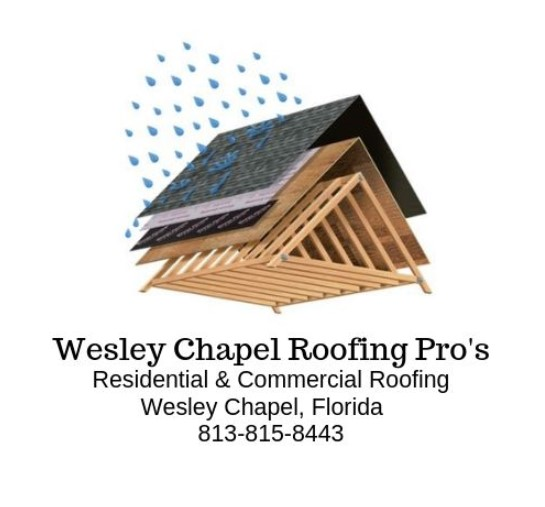 Wesley Chapel Roofing Pro's