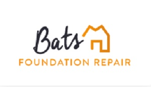 Bats Foundation Repair
