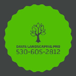 Davis Landscaping