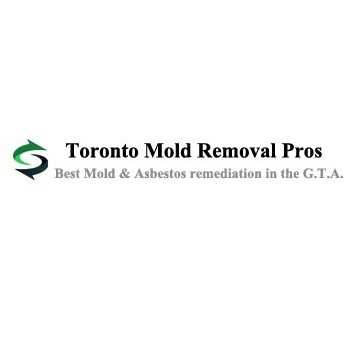 Toronto Mold Asbestos Removal Pros
