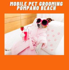 Mobile Pet Grooming Pompano Beach