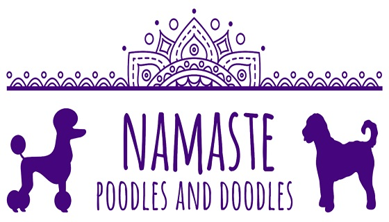 Namaste Poodles and Doodles