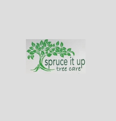 Spruce It Up Tree Care