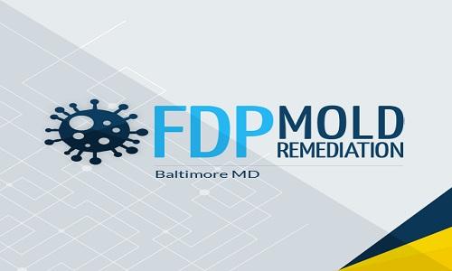 FDP Mold Remediation | Mold Remediation Baltimore