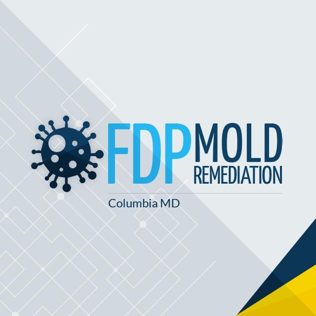 FDP Mold Remediation | Mold Remediation Columbia