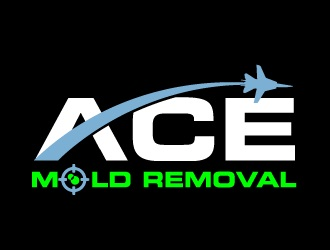Black Mold Removal Co