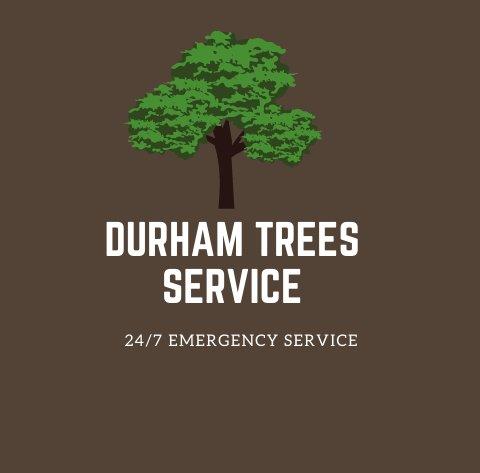 RJ Tree Service Pros