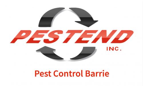 Pestend Pest Control Barrie