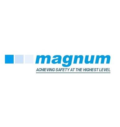 Magnum Scaffolding (Contracts) Ltd