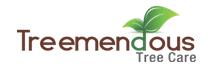 Tree Lopping Tempe - Treemendous Tree Care
