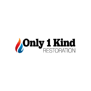 Only One Kind LLC