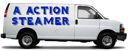 a action steamer carpet cleaning
